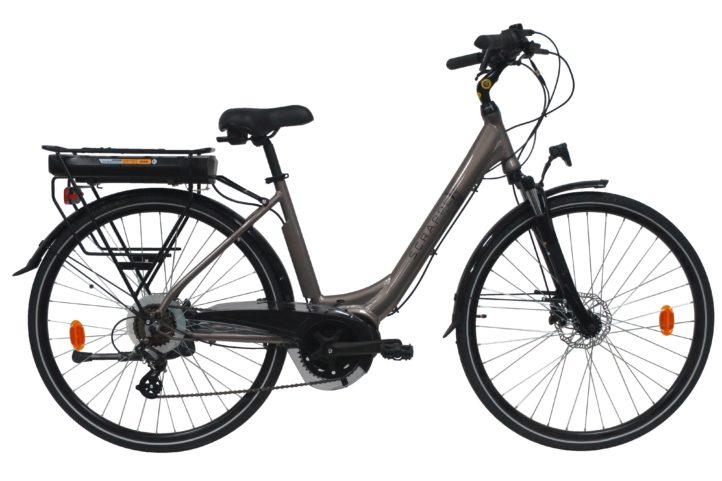Vélo électrique Scrapper E-Disk-1